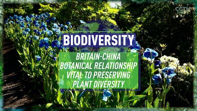 Britain-China botanical relationship vital to preserving plant diversity