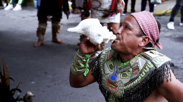 Mexico's Native Tongues Struggle to Stay Alive