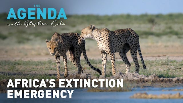 Africa's extinction emergency - The A...
