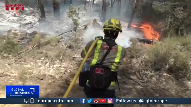 Southern Europe ablaze as wildfires sweep across continent