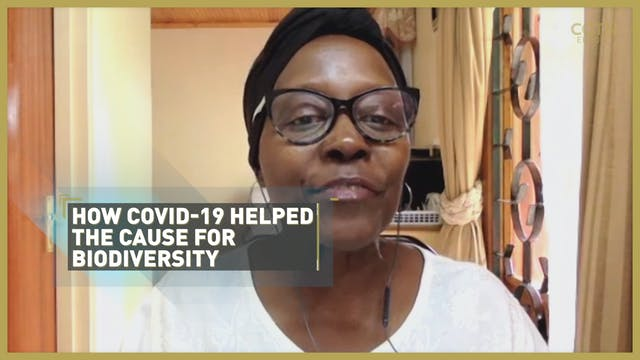 COVID-19 positive impact on biodiversity