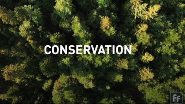 Full Frame: Conservation