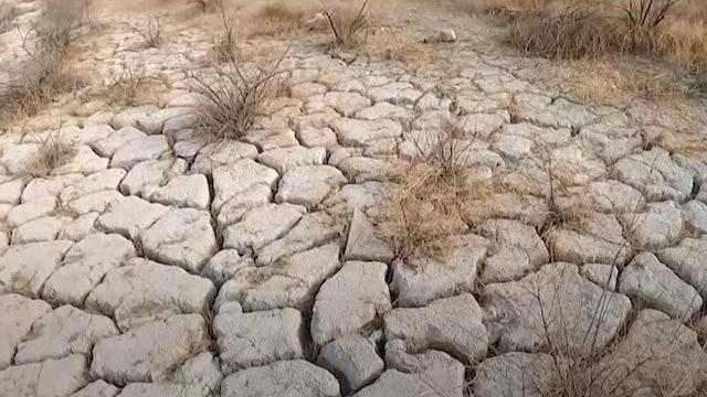 Wild dry west