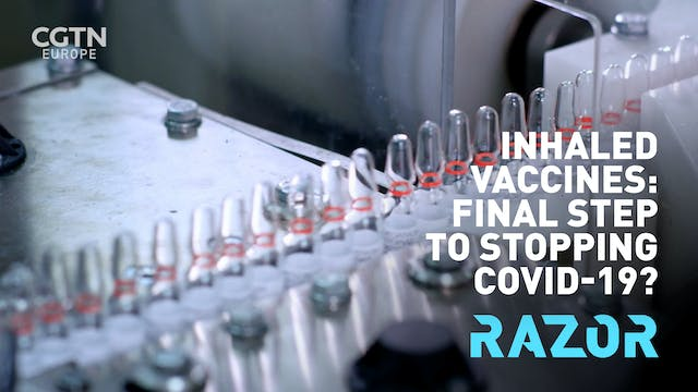 Inhaled vaccines: final step to stopp...
