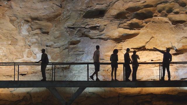 Brazil's Nature Museum