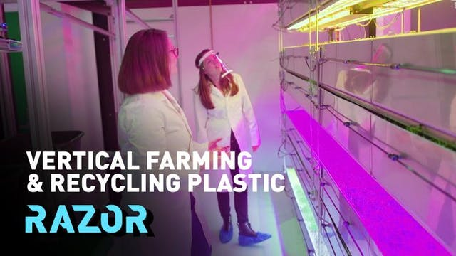 #RAZOR full episode: vertical farming...