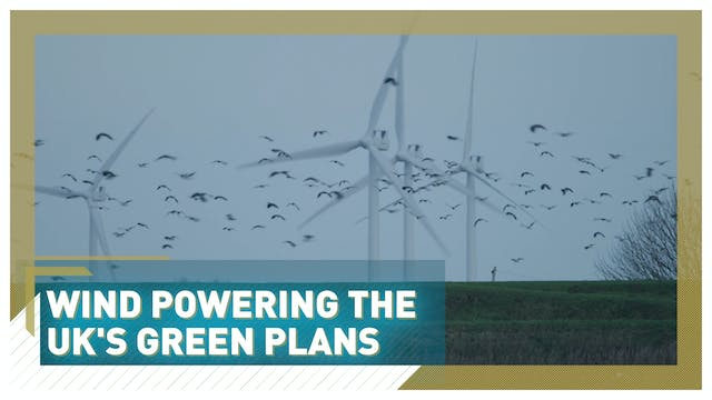 Wind powering the UK's green plans