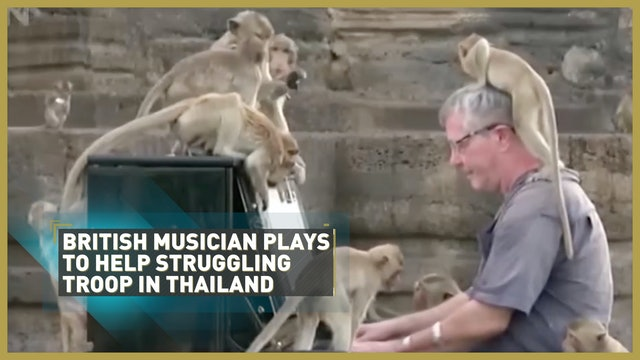 British musician plays to help struggling troop in Thailand