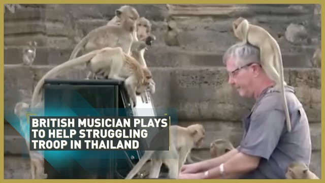 British musician plays to help strugg...