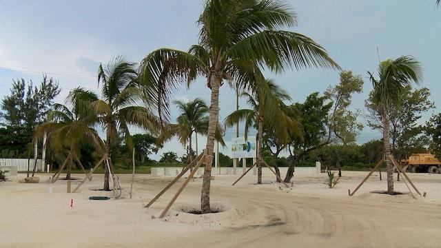 Belize Real Estate Boom
