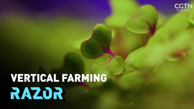 #RAZOR: Vertical farming