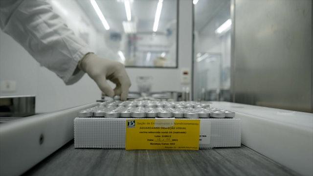 Politics Challenge COVID-19 Vaccinations in Brazil