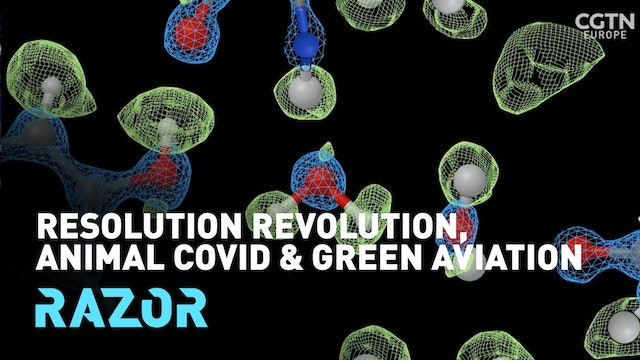 Resolution, revolution, animal COVID and green aviation: #RAZOR full episode