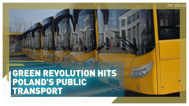 Green revolution hits Poland's public transport