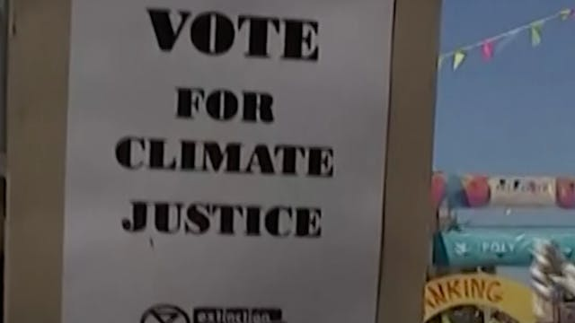 Will ecocide become punishable?