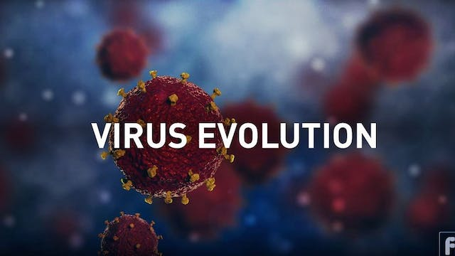 Virus Evolution with Dr. Jonna Mazet ...