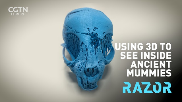 #RAZOR: Using 3D to see inside mummies