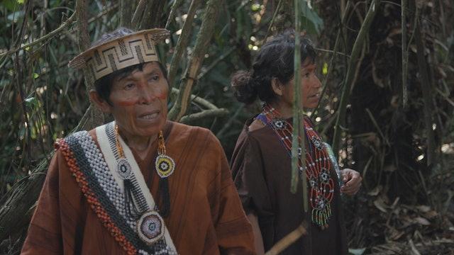 Indigenous in Peru fear COVID-19 pandemic