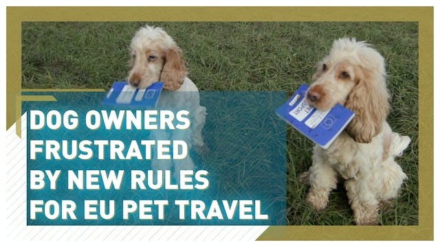 Dog owners frustrated by new rules fo...