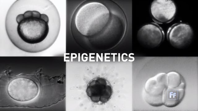 Epigenetics with Dr. Moshe Szyf