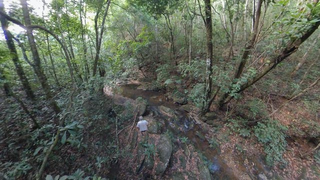 Could private conservationism save th...