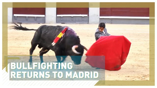 Bullfighting returns to Madrid