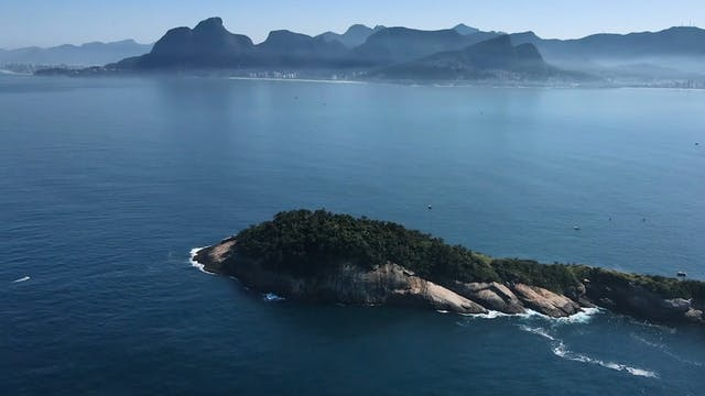 Archipelago: Saving Brazil's marine life