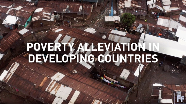 Poverty Alleviation in Developing Countries