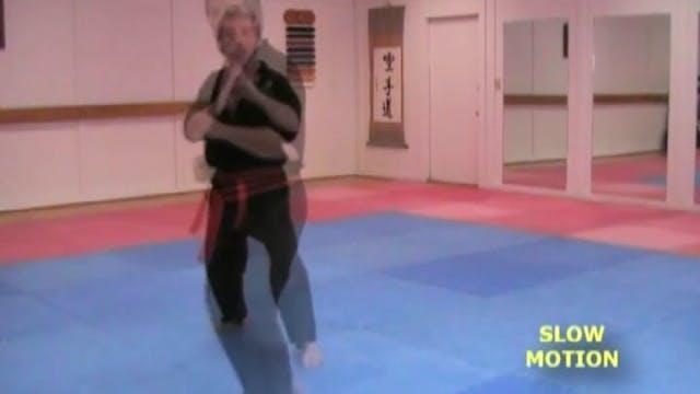 Basic Kicks