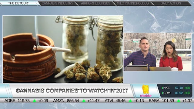 What High Times' Jeff Siegel Looks For in Cannabis Companies