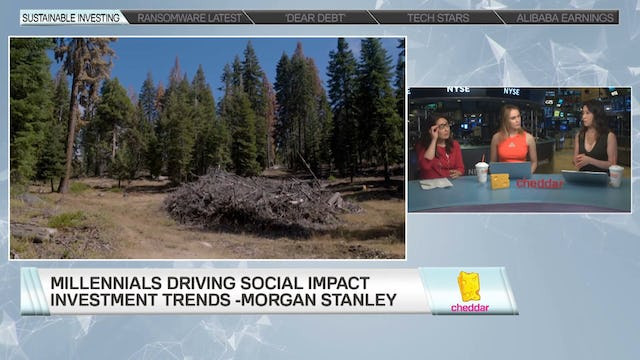 Morgan Stanley's Audrey Choi on Sustainable Investing