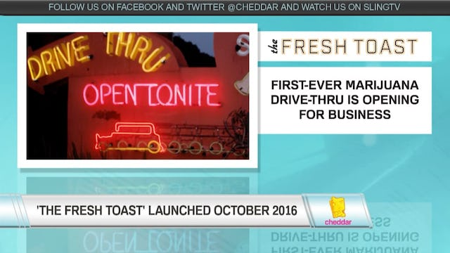 The Fresh Toast's Content Strategy