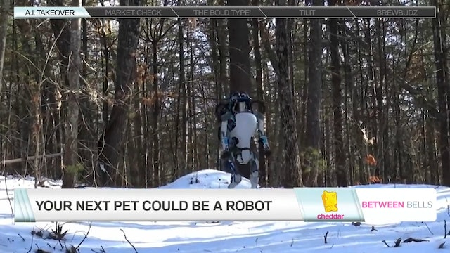 Your Next Pet Could Be a Robot