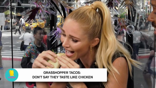 Grasshopper tacos from NYC's The BLAC...