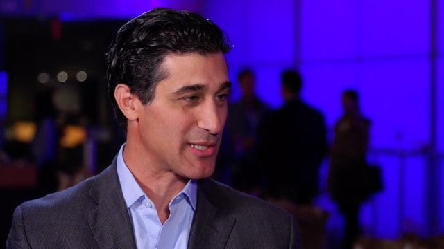 Zeel CEO Samer Hamadeh talks about di...