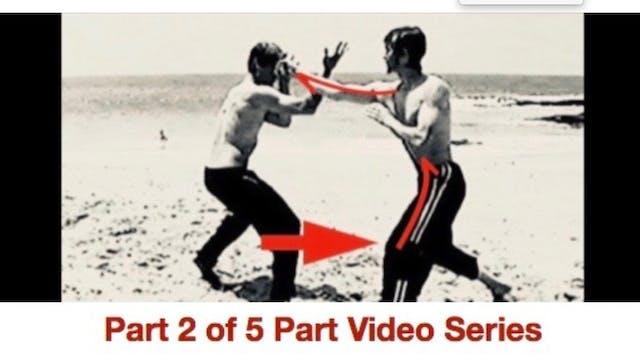 Pt 2 Bio-energetic Secrets: Force & Counterforce