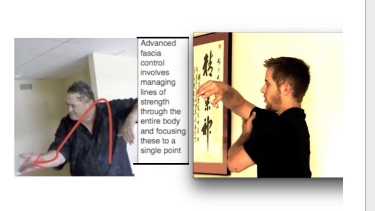 Advanced Fascia Training - for Internal Power