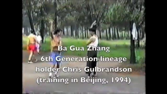 f-Chris Gulbrandson ba gua demo-96