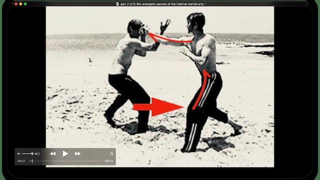 part 2 of 5: Bio-energetic secrets of the Internal martial arts
