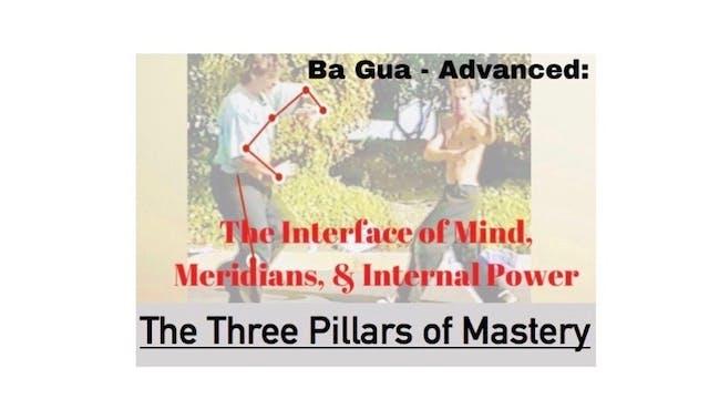 Ba Gua: Advanced: The 3 Pillars of Mastery