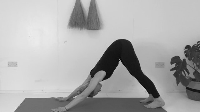 SLOW SPINE MOBILITY