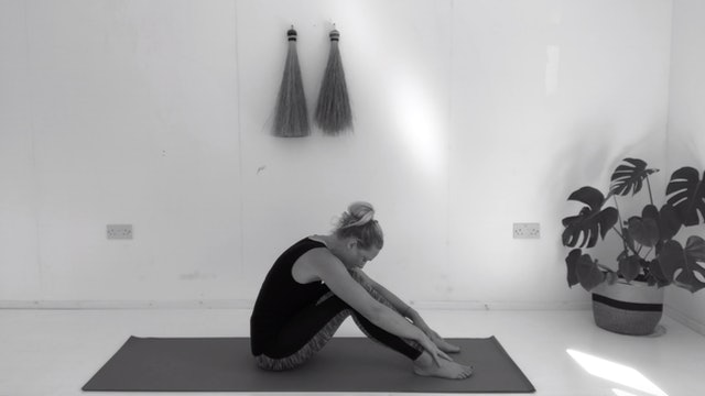 BASIC PRINCIPLES OF STOTT PILATES