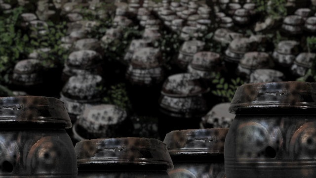 Kimchi Warrior (Episode 12: Forever)