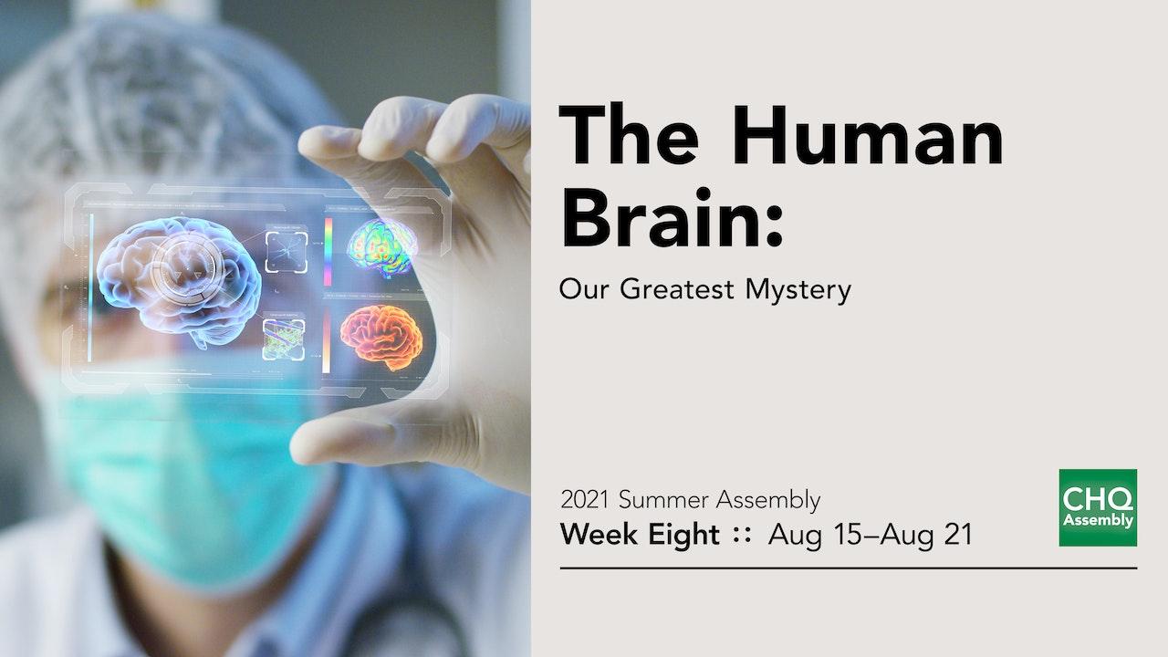 The Human Brain: Our Greatest Mystery