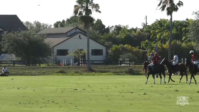 Orea Polo Team vs Tamera - Part 3