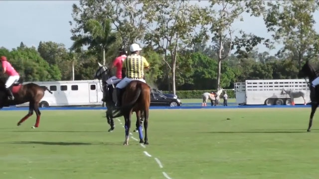 SD Farm vs Valiente - Game 11 - Palm Beach Open - 2019 March 14th