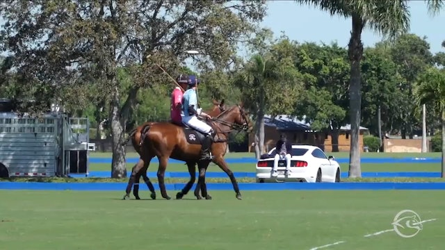 Grand Champions Polo Club vs Alegria - Game 1 - Palm Beach Open - 2019 March 6th