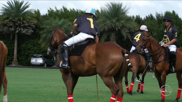Audi vs World Polo League - Game 12 - Triple Crown of Polo - 2019 April 7th