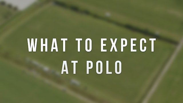What to expect at polo