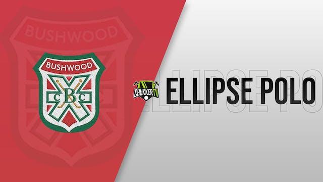 Bushwood Vs Ellipse Polo